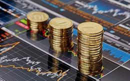 Chứng khoán Bản Việt (VCSC) chuẩn bị chi hơn trăm tỷ trả cổ tức cho cổ đông hiện hữu