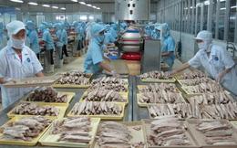 Triển vọng xuất khẩu tôm, cá tra năm 2019