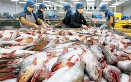 Mỹ dẫn đầu về tiêu thụ cá tra của Việt Nam