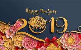 Tạm biệt năm cũ, bạn đã chuẩn bị những gì cho 365 ngày mới Kỷ Hợi 2019?