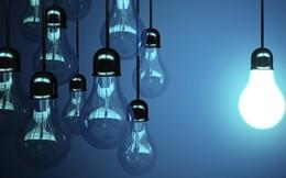 Chi phí giá vốn tăng cao, Bóng đèn Điện Quang (DQC) báo lãi sụt giảm năm thứ 4 liên tiếp