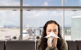 Máy bay vốn không sạch như mọi người vẫn nghĩ, hãy bỏ túi ngay 8 bí kíp phòng bệnh sau để đi lại an toàn trong dịp Tết này