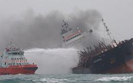 Bộ Ngoại giao Việt Nam lên tiếng về vụ chìm tàu ngoài khơi Hồng Kông: Vẫn còn 2 người mất tích