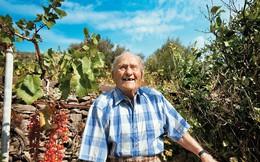 Chuyện cụ ông cáu kỉnh suốt 80 năm bất ngờ thay đổi và bài học đáng suy ngẫm cho những ai cả đời theo đuổi danh vọng và hạnh phúc