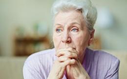 Những quy tắc cuộc sống vốn đơn giản nhưng bị đa số chúng ta bỏ qua, rồi về già ai cũng lại tiếc nuối
