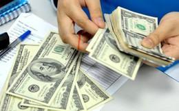 Lo ngại đằng sau việc dự trữ ngoại hối tăng lên mức kỷ lục 71 tỷ USD