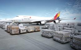 Saigon Cargo Service (SCS) chốt quyền tạm ứng cổ tức bằng tiền đợt 1/2019 tỷ lệ 30%