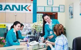 ABBank đặt mục tiêu lợi nhuận trước thuế 1.358 tỷ đồng trong năm nay, bầu bổ sung đại diện của Maybank vào HĐQT