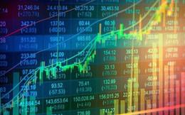 Dragon Capital: Cổ phiếu vốn hóa vừa và nhỏ của Việt Nam đang hấp dẫn