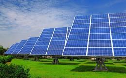 Bamboo Capital phát hành riêng lẻ 900 tỷ đồng trái phiếu chuyển đổi để đầu tư các dự án năng lượng mặt trời và bất động sản