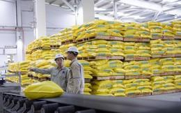 Lợi nhuận quý 3 của Đạm Phú Mỹ giảm 61% xuống 60 tỷ đồng