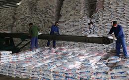 Thị trường phân bón cạnh tranh gay gắt, Hóa chất Lâm Thao (LAS) báo lãi quý 3 giảm hơn 90%