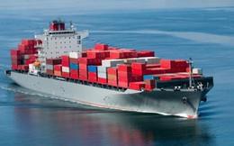 Doanh nghiệp thủy sản khó khăn hơn khi cước phí vận chuyển tàu biển tăng 30%