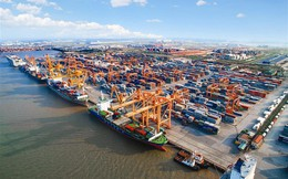 Không còn nguồn thu từ tiền đền bù, Cảng Hải Phòng (PHP) giảm 27% lãi ròng quý 3
