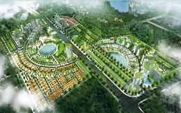 Các dự án lùm xùm của Petroland dưới thời Chủ tịch Bùi Minh Chính