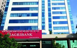 NHNN giao người mới thay thế ông Trịnh Ngọc Khánh điều hành Hội đồng Thành viên Agribank