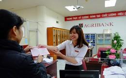 Agribank phát hành thành công lô trái phiếu 5.000 tỷ đồng, lãi suất kỳ đầu 8,1%/năm