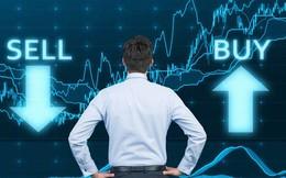 Thêm hàng loạt cổ phiếu vừa bị tạm ngừng giao dịch, bị kiểm soát hoặc bị nhắc nhở vi phạm trên toàn thị trường