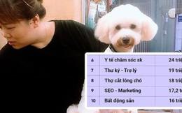 """""""Cắt lông chó"""" - nghề siêu hot lọt top 10 công việc có lương cao nhất ở Việt Nam, kiếm hơn 18 triệu đồng/tháng nhàn như chơi, liệu sự thật như thế nào?"""