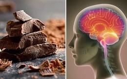 Các chuyên gia đã chỉ ra những lợi ích không ngờ của việc ăn sô cô la đối với não bộ và những cơ quan khác trong cơ thể: Ai cũng cần phải biết và thử ngay hôm nay