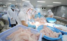 Hơn 630 doanh nghiệp được phép xuất khẩu thủy sản sang Đài Loan