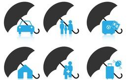 Thị trường bảo hiểm phi nhân thọ vẫn lạc quan, doanh nghiệp được dự báo tiếp tục lãi lớn