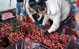 """Vô số bất cập logistics """"cản chân"""" nông sản Việt"""