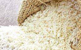 Sau nhiều tranh cãi, Philippines vẫn sẽ tiếp tục là động lực của ngành xuất khẩu gạo Châu Á