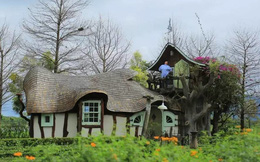 Người phụ nữ 60 tuổi dùng khoản tiền tiết kiệm trong 12 năm để mua đất, xây ngôi nhà cổ tích an hưởng tuổi già cùng người thân