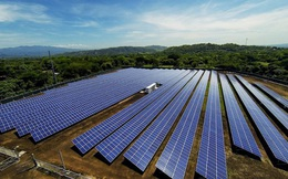 Tại sao doanh nghiệp có thể vỡ mộng điện mặt trời?
