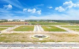 Đồng Nai: Sẽ đấu giá 5 khu đất ở huyện Long Thành với giá khởi điểm 550 tỷ đồng
