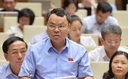 ĐBQH chất vấn Bộ trưởng Trần Tuấn Anh: Kinh tế Việt Nam là kinh tế mở hay kinh tế hở?