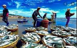 10 tháng, xuất khẩu thủy sản cán mốc 7 tỷ USD