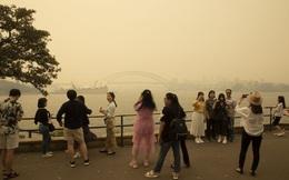 Cái giá phải trả cho biến đổi khí hậu: Đến Sydney cũng mờ mịt khói mù, không còn bầu trời trong xanh hấp dẫn du khách