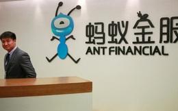 Reuters: Ant Financial của Alibaba âm thầm mua cổ phần đáng kể một ví điện tử Việt Nam