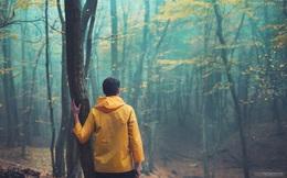 Khi cuộc sống như một mê cung trong màn đêm đen tối, đây là 5 mũi tên đắt giá dẫn dắt bạn đến lối ra