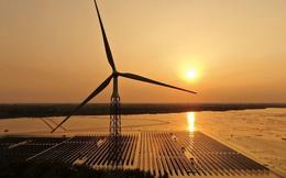 Thị trường năng lượng sạch phụ thuộc vào Trung Quốc như thế nào?