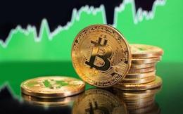 Bitcoin trì trệ, thị trường 'rực đỏ'