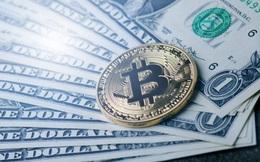 Bitcoin lại giảm 'sập sàn'