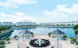 Lideco dự kiến lợi nhuận 2020 tăng đột biến nhờ bán chạy biệt thự, liền kề Khu đô thị Lideco Hoài Đức