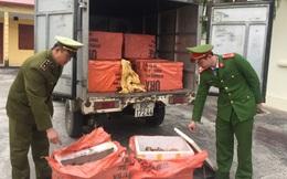 """Chặn đứng hơn 1 tấn chân giò, nầm, xương lợn """"bẩn"""" trên đường về Hà Nội"""