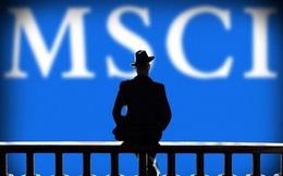 MSCI Frontier bất ngờ giảm tỷ trọng cổ phiếu Việt Nam sau đợt cơ cấu tháng 11