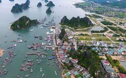 Quảng Ninh: Thí điểm hợp nhất Ban Tổ chức Tỉnh ủy và Sở Nội vụ