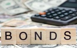 VNDIRECT chuẩn bị phát hành 200 tỷ đồng trái phiếu với lãi suất coupon 9,8%/năm