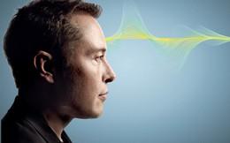 Tỷ phú Elon Musk: Tài năng, tham vọng và mất chức vì 'vạ miệng'