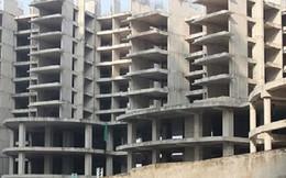 HoREA: Tranh chấp chung cư có xu hướng gia tăng và tính chất ngày càng phức tạp