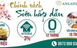 Anland Premium tặng khách hàng heo vàng may mắn cùng chính sách bán hàng hấp dẫn