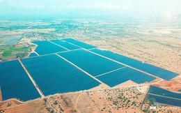 BIM Group chính thức khánh thành cụm 3 nhà máy điện mặt trời 330MWp