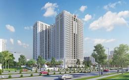 Cận cảnh căn hộ với tiêu chuẩn bàn giao cao cấp của dự án - Florence Mỹ Đình