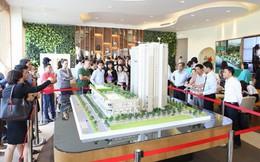 Lý giải cho sức hấp dẫn của căn hộ xanh ngay trung tâm thành phố Thanh Hóa